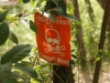 Landmine Museum Sieam Reap