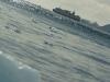 antartica_ocean_nova-46