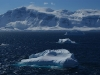 antartica_ocean_nova-72