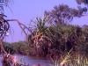 australien_kakadu_nationalpark_16