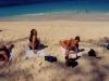 bahamas_cruise-20