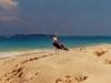 bahamas_cruise-25