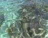 bahamas_cruise-9
