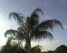 roundtrip_florida-29