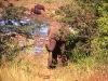 south_africa-74