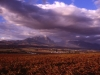 south_africa-88