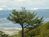 Tierra del Fuego Ushuaia 28