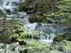 Tierra del Fuego Ushuaia 29
