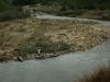 Tierra del Fuego Ushuaia 35