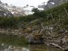 Tierra del Fuego Ushuaia 43
