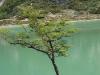 Tierra del Fuego Ushuaia 51