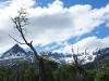 Tierra del Fuego Ushuaia 54